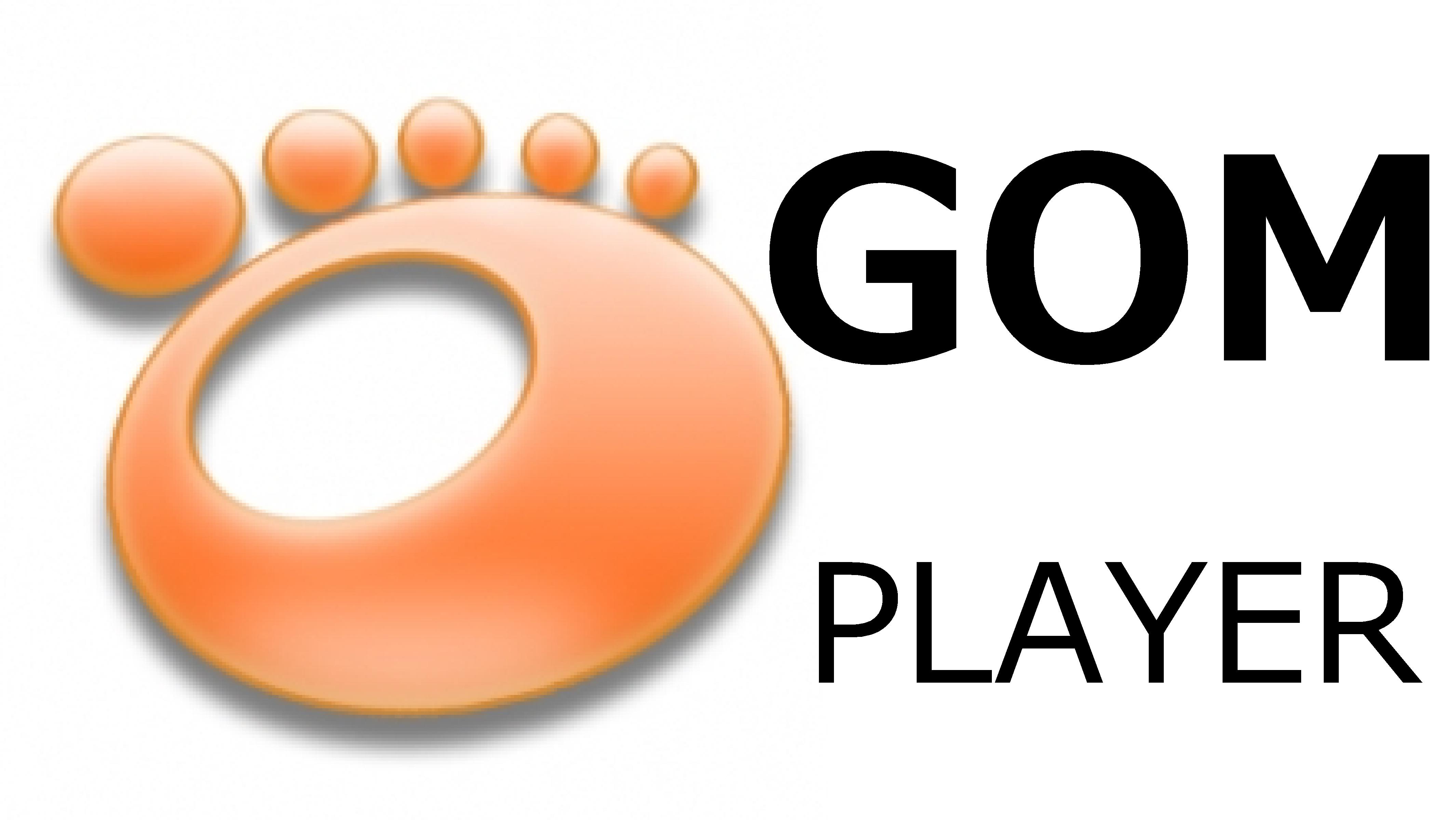 ゴムプレイヤーのダウンロード手順と操作方法をわかりやすく解説!